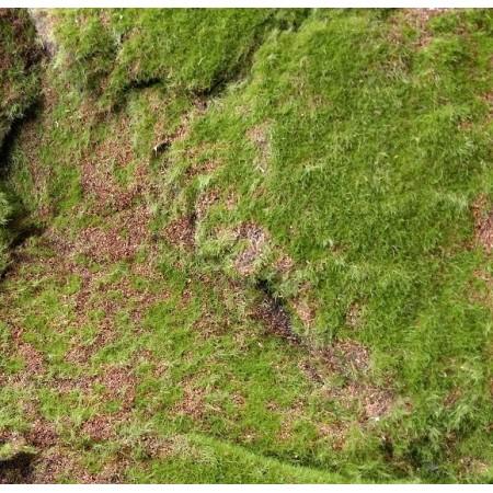 Искусственный мох горный дизайн 18