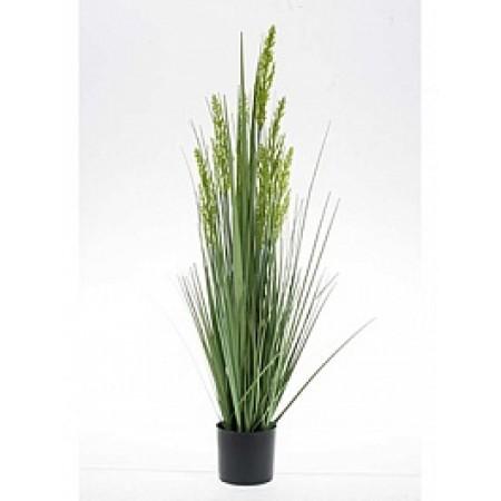 Зерновая трава 90 см