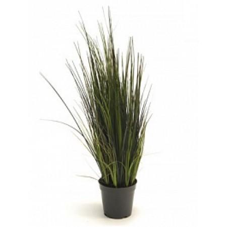 Речная трава 60 см