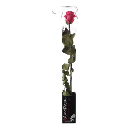 Амороза стандарт в упаковке розовый 1490