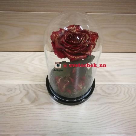 Красная с позолотой роза в колбе, премиум
