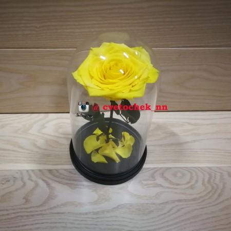 Желтая роза в колбе, премиум