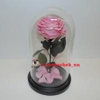 Розовая роза в колбе королевская