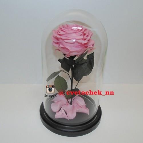 Розовая роза в стеклянной колбе королевская