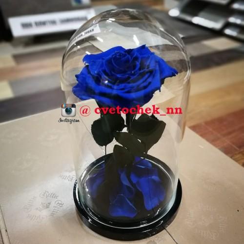 Синяя роза в стеклянной колбе королевская