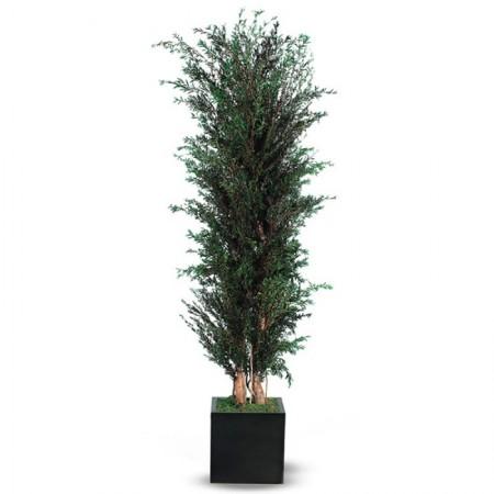 Дерево Лепто кустообразное зеленый 130 см