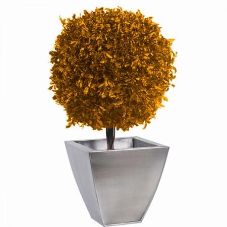 Дерево Питоспорум 1 шар 30 желтый 40 см