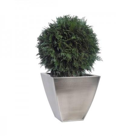 Дерево Туя 1 шар зеленый 40 см