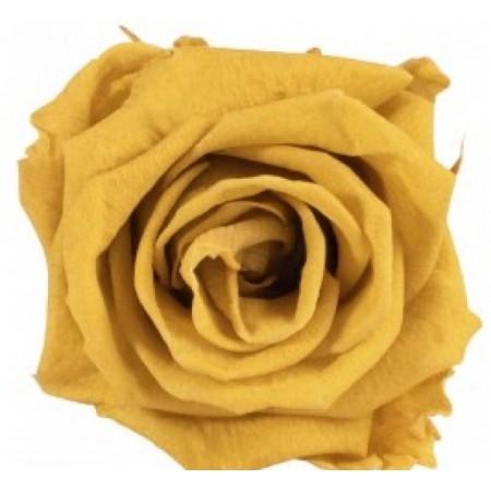 Роза мини навал зеленый чай 0150