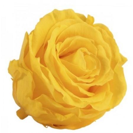 Роза стандарт навал желтый 0360