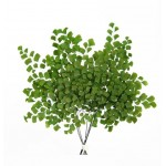 Стабилизированные ветви и листва