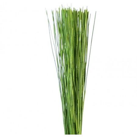 Маш Рид зеленый
