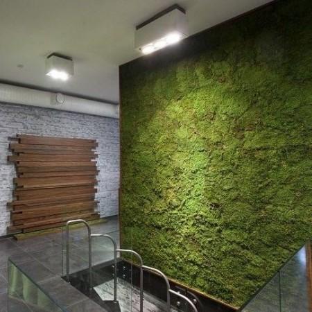 Озеленение плоским мхом