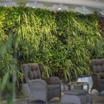 Озеленение помещений