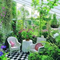 Зимний сад, оранжерея